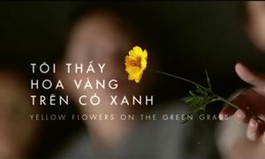 Hình ảnh đẹp mơ màng từ trailer mới 'Tôi thấy hoa vàng trên cỏ xanh'