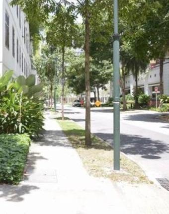 singapore-xet-xu-ke-cuong-dam-sao-nu-trung-quoc-tren-pho