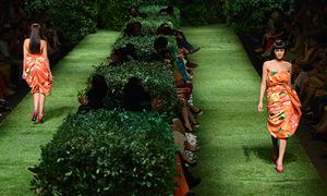 Sàn catwalk của Đỗ Mạnh Cường sẽ tỏa hương thơm