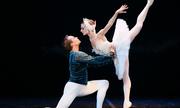 Ballet 'Hồ thiên nga' bán hết vé trước ngày diễn ở TP HCM