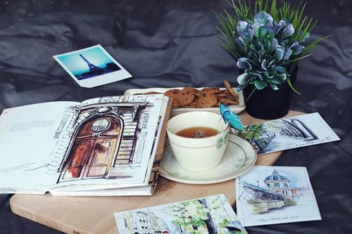 Những bức tranh minh họa cho sách do Amanda Huỳnh tự vẽ.
