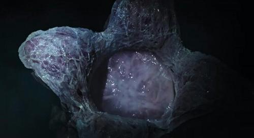 cuoc-chien-sinh-ton-dam-mau-trong-bom-tan-alien-1