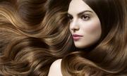 Giải pháp phục hồi tóc hư tổn từ chuyên gia Thea