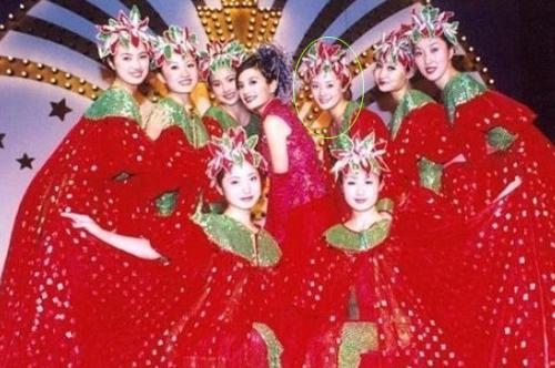 Tôn Lệ gia nhập làng giải trí năm 2001 sau khi giành giải nhì một cuộc thi tìm kiếm tài năng của Singapore. Phim đầu tiên cô đóng là Tân dòng sông ly biệt, với vai trò múa phụ họa trong các cảnh Triệu Vy ca hát. Trong ảnh, Tôn Lệ