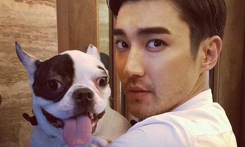 Si Won bị đòi dừng đóng phim vì để thú cưng cắn chết người