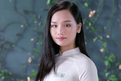 Các phim điện ảnh Việt thành công và gây thất vọng 2017 - 1