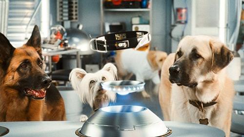 Phân cảnh trong Cats and Dogs phần 2.