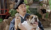 Tình yêu cảm động của Châu Tinh Trì với chú chó cưng