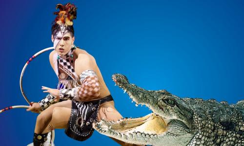 Tiết mục xiếc cá sấu được đầu tư kỹ lưỡng để đảm bảo an toàn cho khán giả.