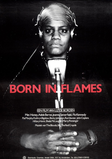 Poster Born in flames.
