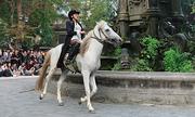 Người mẫu cưỡi ngựa quanh vườn hoa Con Cóc