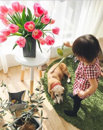 Cô sinh con gái đầu lòng hồi tháng 4/2016. Cô bé được vui chơi trong không gian nhiều nắng bên chú chó thân thiết ở ban công. Ban công thiết kế khép kín, an toàn cho trẻ.