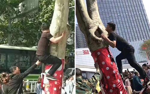 Không ít người leo cây