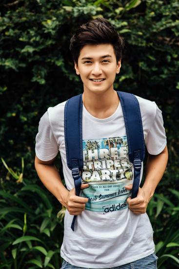 Năm 18 tuổi, Huỳnh Anh bắt đầu công việc diễn xuất chuyên nghiệp với vai thứ chính trong Bi, đừng sợ. Sau đó, anh góp mặt trong Thiên sứ 999, Bộ tứ 10A8, Cầu vồng tình yêu... và gần đây là Tình khúc bạch dương, Cả một đời ân oán.