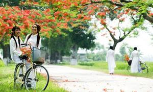 'Mùa hạ cuối cùng' - khúc hát của mối tình học trò thầm lặng