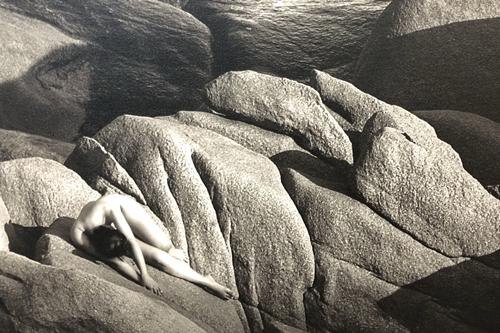 Các tác phẩm của Thái Phiên thường lấy bối cảnh thiên nhiên.
