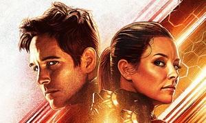 'Người Kiến 2' - bom tấn hài hước và ấm áp của Marvel
