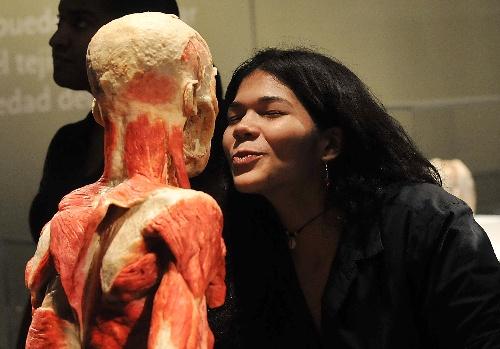 Triển lãm cơ thể người từng được tổ chức ở nhiều quốc gia, thu hút hàng triệu khán giả.