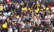Sao Hàn hủy show, fan Việt vẫn đến sân khấu gọi tên thần tượng