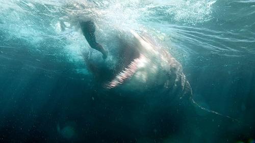 Dự án có kinh phí hơn 130 triệu USD có nhiều cảnh kỹ xảo cá mập khá đẹp.