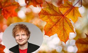 'Autumn Leaves' - kiếp người như lá thu