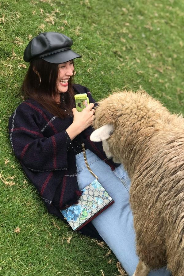 Quang Vinh, Diễm My thả đèn trời, chơi đùa với cừu ở Đài Loan