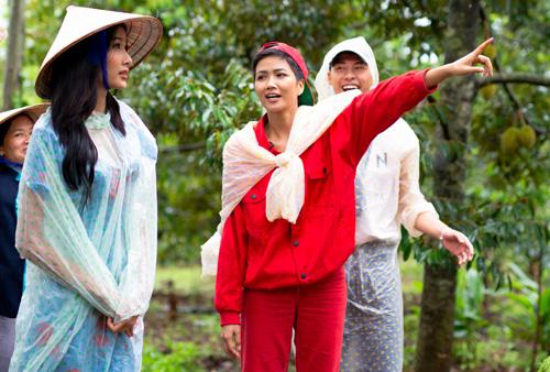 Hoàng Thùy, HHen Niê và Võ Thành An trong thử thách hái bơ ở vườn nhà.