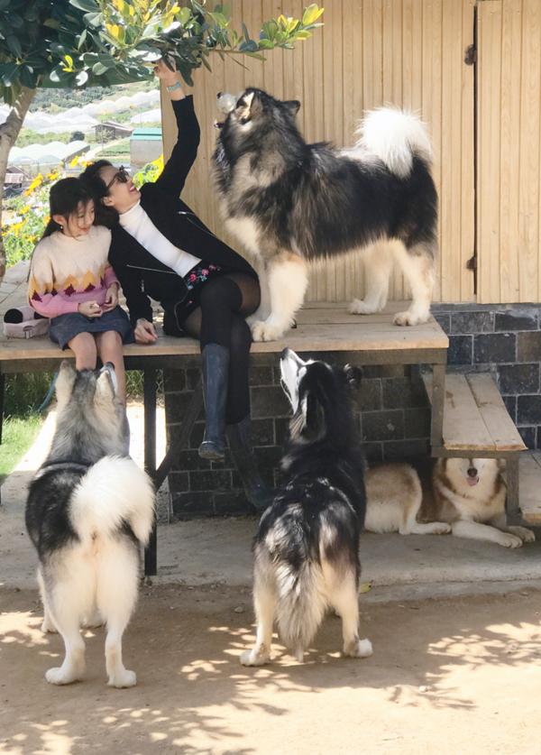 Mẹ con Ngọc Diễm nô đùa cùng thú cưng ở Đà Lạt