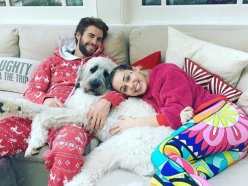 Từ sau khi nối lại quan hệ, Miley Cyrus và Liam Hemsworth chia sẻ nhiều khoảnh khắc vui vẻ trong ngôi nhà bên bờ biển Malibu. Cô chia sẻ trên trang cá nhân: Vô cùng tuyệt vọng khi hỏa hoạn ảnh hưởng tới cộng đồng của tôi. Thật may khi các con thú và người tôi yêu đều an toàn. Đó là điều quan trọng lúc này. Ngôi nhà của tôi không còn nhưng những ký ức bên người thân ở nơi đó sẽ còn mãi.