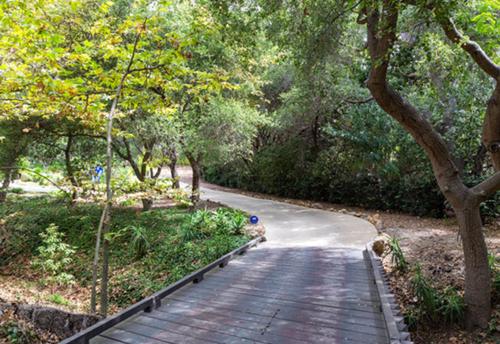 Khoảng vườn rộng 8.000 mét vuông như một khu rừng thu nhỏ. Từ nhà, Miley chỉ đi bộ một đoạn ngắn là ra biển Paradise Cove.