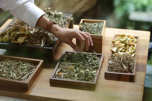 Nếu da bạn quá nhạy cảm, thì hãy thử dòng mỹ phẩm làm từ thảo dược thiên nhiên xem sao