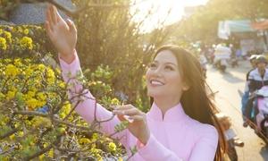Hoa hậu Phương Khánh dạo chợ hoa quê nhà Bến Tre