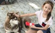Con gái Hoa hậu Ngọc Diễm dùng tiền lì xì chăm thú cưng