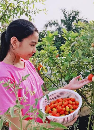 Ngoài việc học, Lọ Lem hay đỡ đần mẹ trong việc bếp núc. Cô bé thay cha chăm sóc vườn rau, quả của gia đình tại biệt thự ởhuyện Nhà Bè, TP HCM.