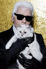 Tài sản 200 triệu USD của Karl được dự đoán chia cho mèo