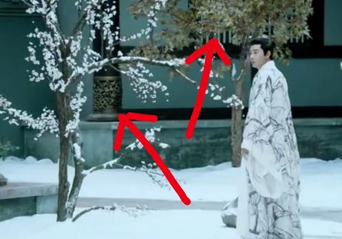 Một cây trụi lá, tuyết đóng băng còn một cây không hề dính tuyết.