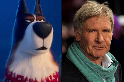 Harrison Ford và chú chó Rooster.