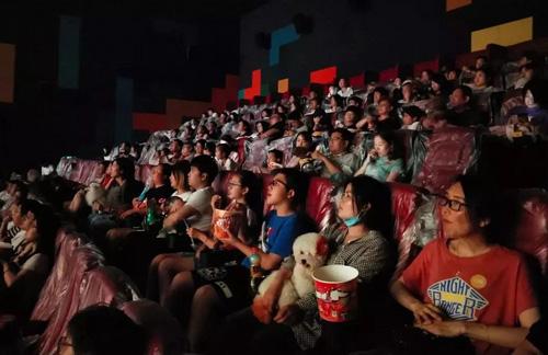 Khán giả đưa chó đi xem phim miễn phí ở Hàng Châu. Ảnh: Jiaxing.