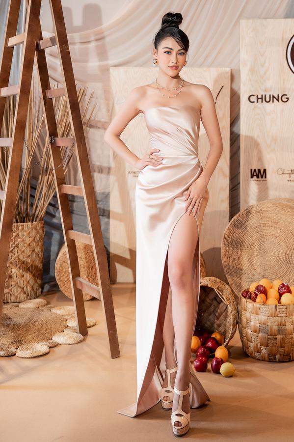 Dàn sao diện váy tôn vòng một đi xem thời trang