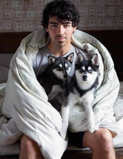 Joe Jonas chụp ảnh cùng hai thú cưng trên tạp chí Peple năm 2018. Ảnh: People.