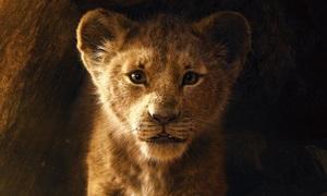 Kỹ xảo tạo thú vật giống thật của 'The Lion King'
