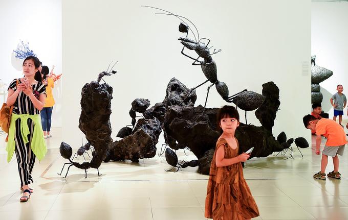 Triển lãm mô hình côn trùng