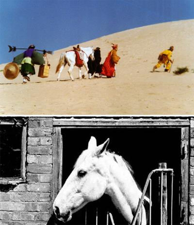 Bạch Long Mã bôn ba cùng đoàn phim và khi già (ảnh dưới).