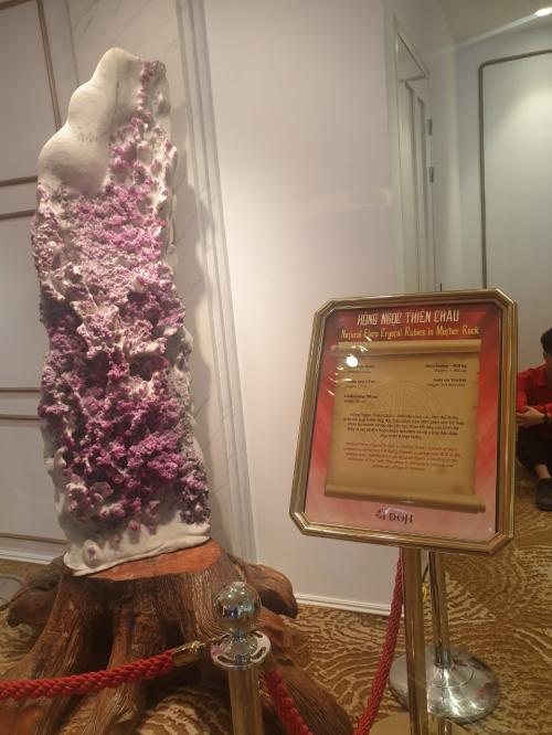 Lương Thùy Linh giới thiệu những bảo vật kỷ lục của DOJI - 5