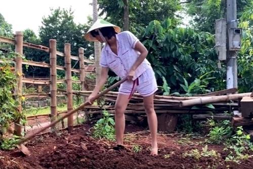 Hoa hậu cuốc đất, trồng thêm rau trước nhà.