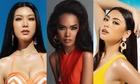 12 ứng viên cho ngôi vị Hoa hậu Hoàn vũ Việt Nam 2019