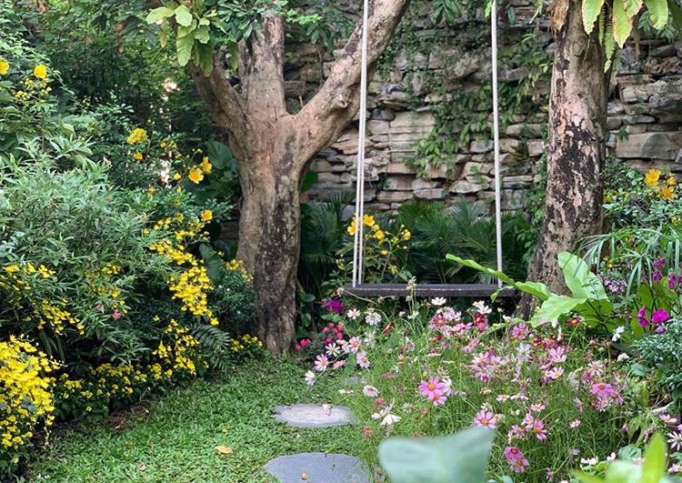 Đàm Vĩnh Hưng trang trí vườn hoa đón Tết - 3