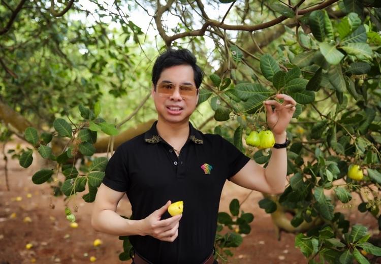 Khu vườn trồng nhiều loại cây ăn trái như điều (đào lộn hột), bơ, sầu riêng, mít, chuối... Ca sĩ cho biết vì diện tích khu đấtkhá rộng, anh phải thuê người làm vườnvà trông nom.