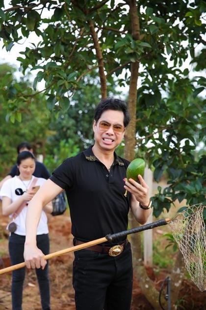 Ca sĩ thích nhất loại bơ Lâm Đồng vì trái chín xanh bóng đẹp mắt, phần thịt ăn mềm mà không nhão, mùi thơm ngậy.