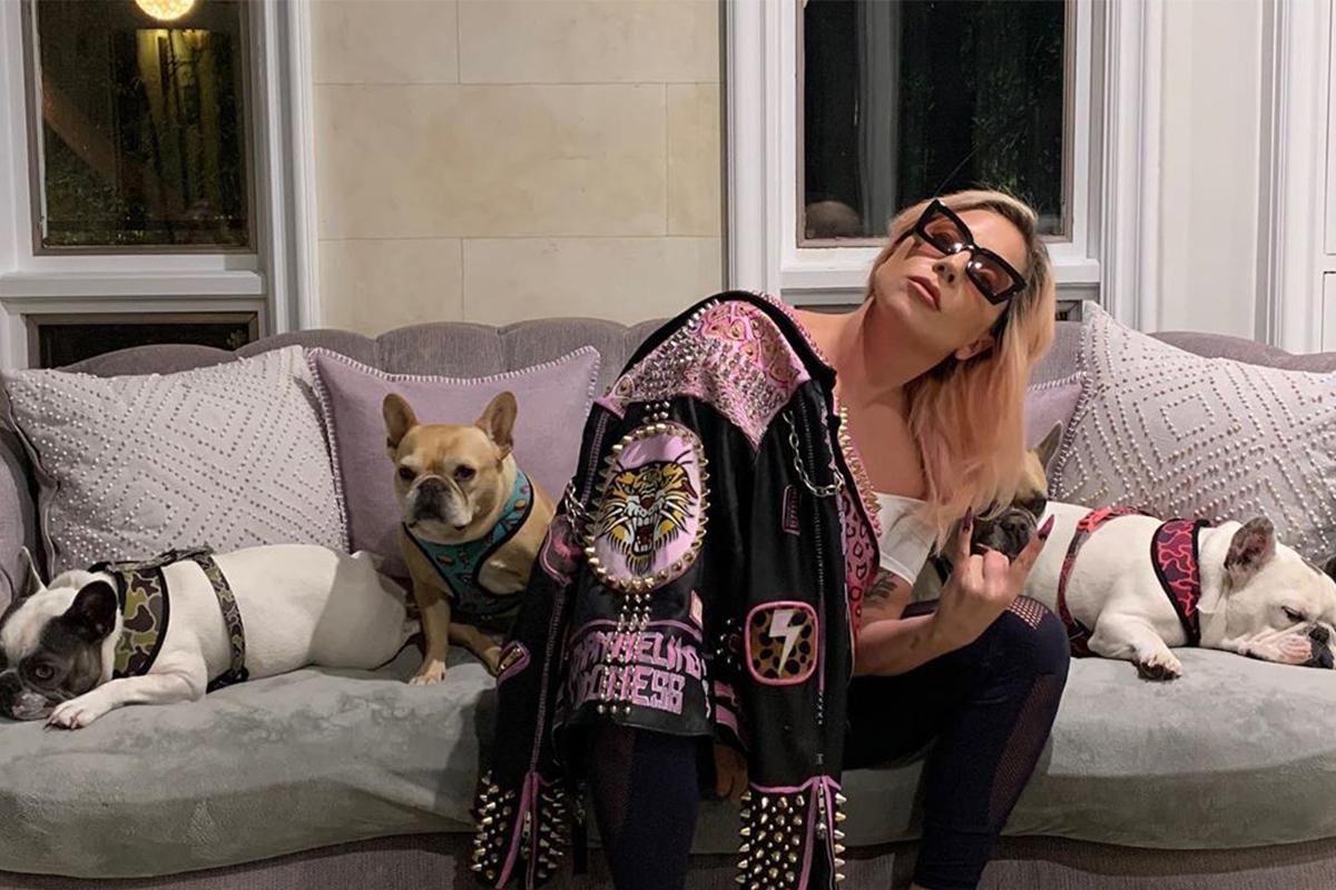 Lady Gaga ??ng hình ?nh t? cách ly t?i nhà riêng cùng ?àn chó, cho bi?t: T?i xin t? v?n t? nhi?u bác s? và nhà khoa h?c. T? cách ly là hành ??ng an toàn và t?t b?ng b?n có th? làm cho b?n than và nh?ng ng??i xung quanh. T?i ??c có th? g?p b? m? và bà trong lúc này nh?ng ?i?u an toàn nh?t là ? nhà, vui ch?i v?i nh?ng chú chó c?a mình. Chúng ta s? ?n th?i. T?i ?? nói chuy?n v?i Chúa và ?ng nói loài ng??i s? kh?ng sao ?au.